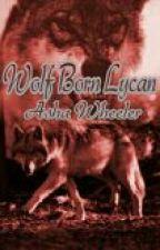 Wolf Born Lycan by AshaWheeler