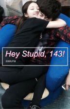 Hey Stupid, 143! by sseuna