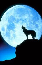 Destiny of a Wolf by lonewolf1337