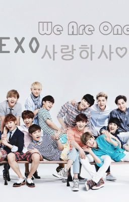 [Fanfic] EXO-We Are One!