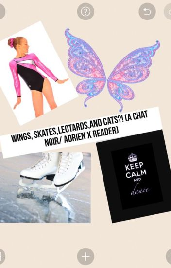 Wings,Skates,Leotards,and Cats?! (A Chat Noir/Adrien x reader)