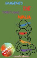 Imágenes graciosas de las tortugas ninja (terminado) by rosafazbear