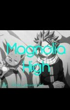 Magnolia High (ON HOLD) by natsu_anime143