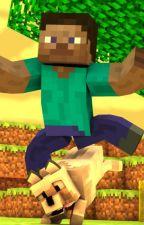Komik Minecraft Maceraları - Steve Türk Olsaydı- by JaponIzleyenAnime