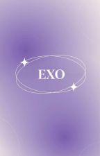 IMAGINE EXO by IMAGINEK-POP