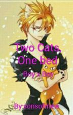 Two Cats, One Bed ((Male Reader X Kyo Sohma)) by sonsofmew
