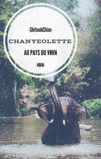 Chanyeolette au pays du vmin by ShiteuhChim