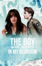 The Boy Who Sneaks In My Bedroom by lavendergomez
