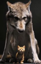 The mewls among the howls by gay-ships-makesmyday