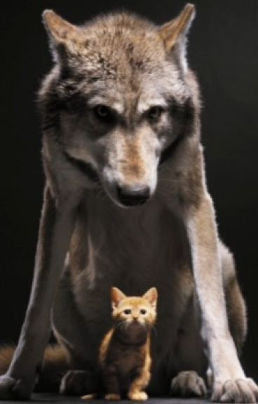 The mewls among the howls