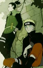 Things In Naruto Fanfics That I Hate by choppurrr