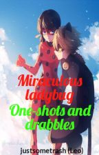 Miraculous Ladybug Drabbles/One-shots (ON HIATUS UNTIL FURTHER NOTICE) by justsometrash