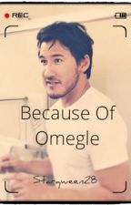 Because of Omegle II ON HOLD II (Markiplier x reader fanfic) by Starqween28