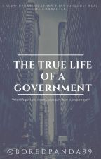 THE TRUE LIFE OF A GOVERNMENT by boredpanda99
