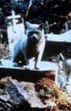 Кладбище домашних животных  by artur9999yu