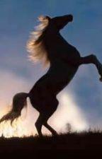 The Runaway Horse Shifter by ScarletSilentFears