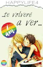 Te Volveré a Ver by HappyLife4
