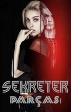 SEKRETER PARÇASI  by Captive_Queen