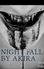 Night Fall by Akira1508