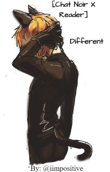 Different [Chat Noir/Adrien Agreste x Reader]