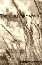 The 2,983 Mile Walk by EmileeEmeree