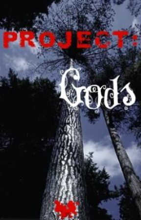 Project GODS by Zanintia725