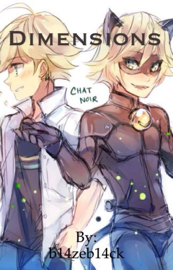 ~Dimensions~ (Reader x Adrien Agreste/Chat Noir)