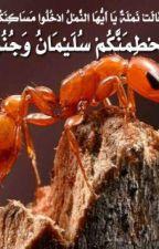 حقائق علمية ذكرت في القران الكريم by malak413