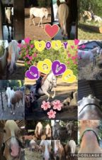 Pony Love: An equine journal of equineiness by MyArabianSky