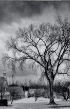 Terkedilmiş Kasaba by FragonB