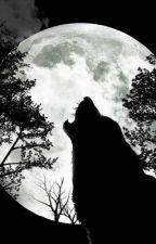 The Alpha of my heart by FeelingBlack