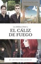 Los mellizos Potter y el Cáliz de Fuego. (Cuarta Temporada) by InfinityReading22