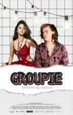 Groupie || H.S by cacccao