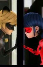 Ladybug und Cat Noir  by lisa_hdl22