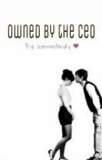 Owned By The CEO by Summerlandy