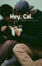 """Hey, Cal."" «Cake Hoodings.» by ltsOkaySammy"