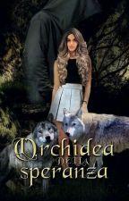 Saga Flores Vitae: L'Orchidea Della Speranza(secondo libro) by Angela-Pianese