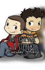 Das erste mal - A Sterek Oneshot Story -  by Dylanhalinski