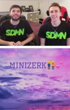MiniZerk by DemSidemenBoys