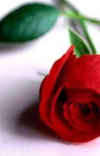 La laideur de la rose by chloelareveuse