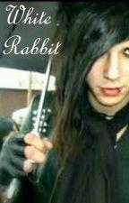 White Rabbit : BLACK VEIL BRIDES by love_works_too