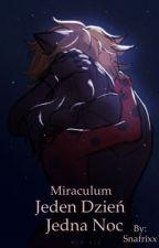 Miraculum Biedronka i Czarny Kot | Jeden Dzień, Jedna noc  by Snafrixx