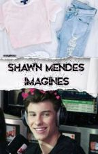 Shawn Mendes Imagines by skylinemendes
