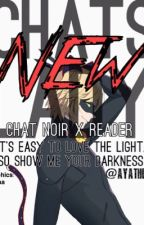 Chat's new lady (Chat x Reader Fanfiction) by AyaTheKid