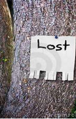 I Lost Myself