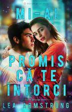 Mi-ai Promis Că Te Întorci by LeaArmstrong