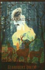 Los Cinco Merodeadores (Srius Black) by helehilas