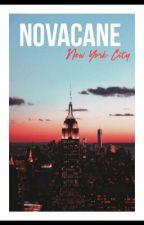 Novacane H.S [Russian Translation]  by JanelIsLivingfor1D