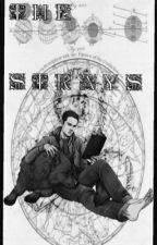 The Strays|| Sterek by laheylester