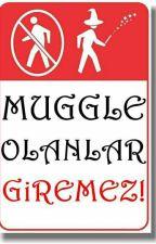 Harry Potter İtirafları, Anıları Ve Etkinlikleri by GulinAbdullahoglu